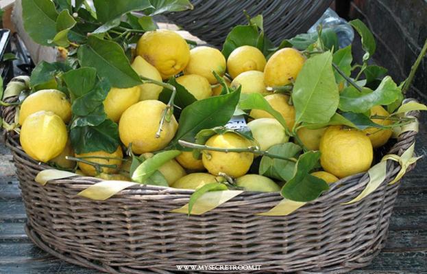 ghiaccioli alla limonata e mirtilli 7